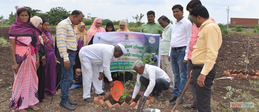Krishi Vigyan Kendra Mohol Dist Solapur conducted Tree Plantation Drive and Kisan Goshti on 17.09.2019 at Krishi Vigyan Kendra Mohol to create awareness of Tree Plantation amongst the Farmers