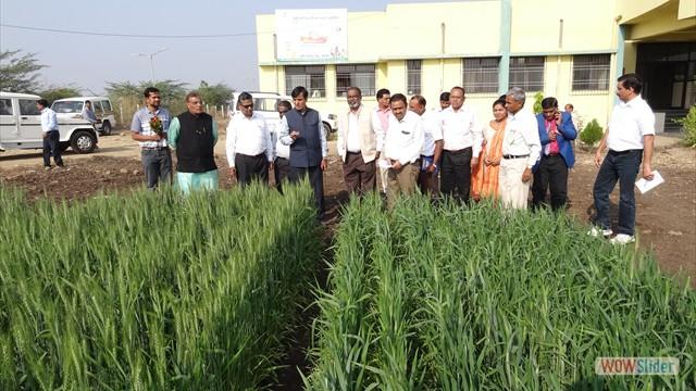 Visit of Hon'ble Dr. K. P. Viswanatha, Vice Chancellor & Hon'ble Dr. K. D. Kokate, Director, Extension Education, MPKV, Rahuri at KVK, Mohol on 10.01.2018